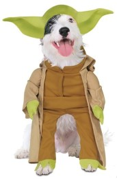 yoda-dog-costume
