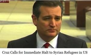 ted cruz halt to syrian refugees