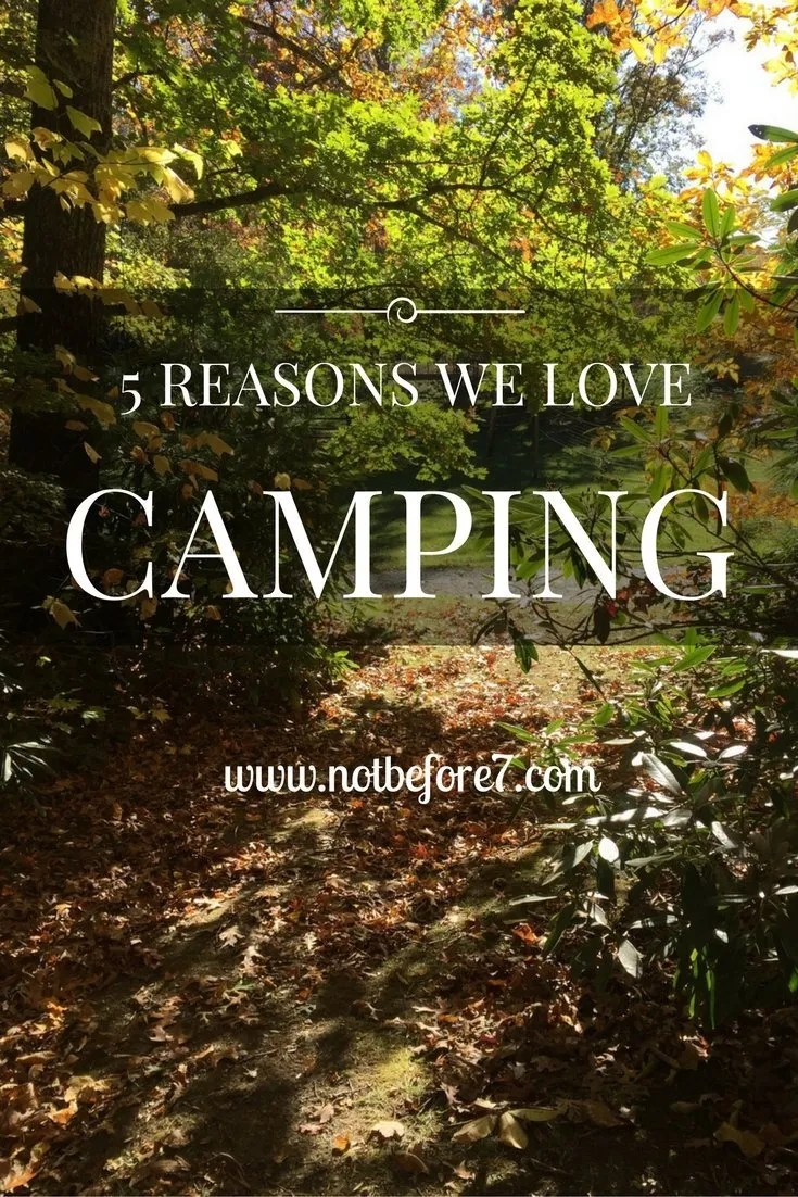 5 Reasons We Love Camping