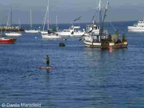 Monterey & Big Sur (13)