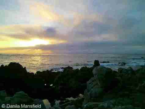 Monterey & Big Sur (17)