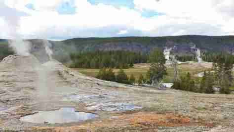 Old Faithful area (9)