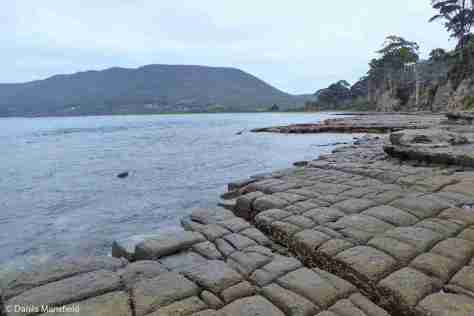 TESSELLATED PAVEMENT, EAGLEHAWK NECK