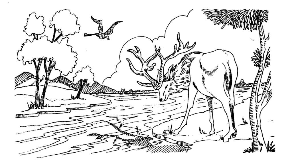 """English Short Story """"The Flight of A Stag"""" English Story"""