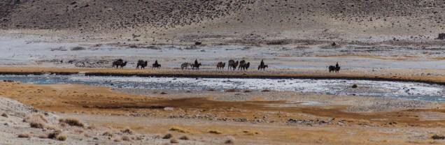 Afghanische Karawane am Pamir River