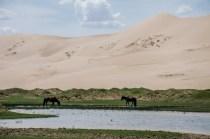 Wasser in der Wüste, beliebt bei jung und alt