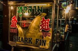 Chinatown Haifischflosse