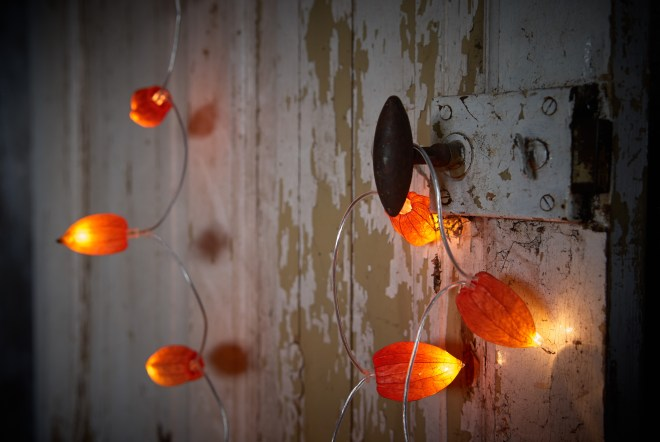 Physalis alkekengi String of lights Japanese lantern DIY autumn decoration ideas