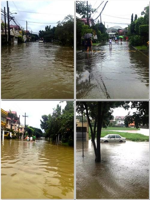 Flood of 2013