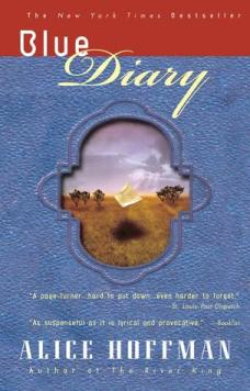 Cover: Blue Diary