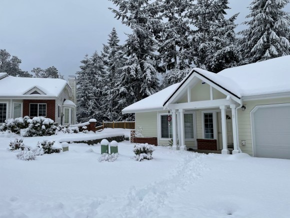 deep snow covering lawns, bushes, trees, and houses