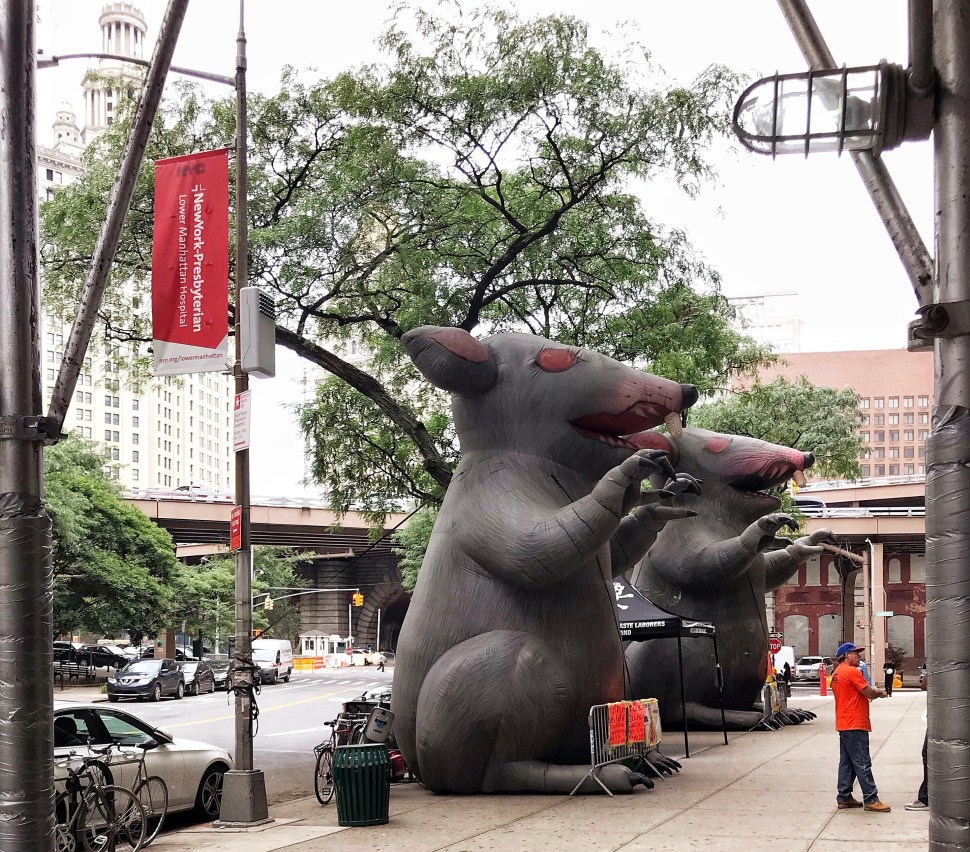 Scabby the Rats scaring 100 Gold Street. Photo by Rick Stachura. July 3, 2019.