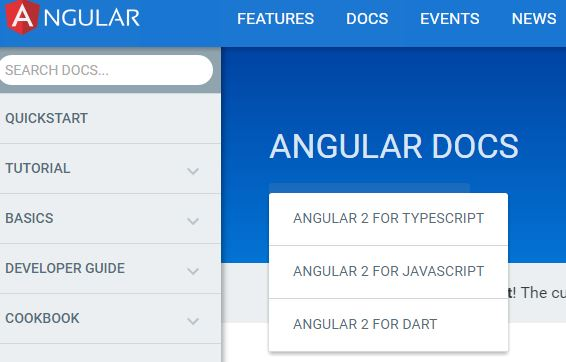 angular2_doc_type
