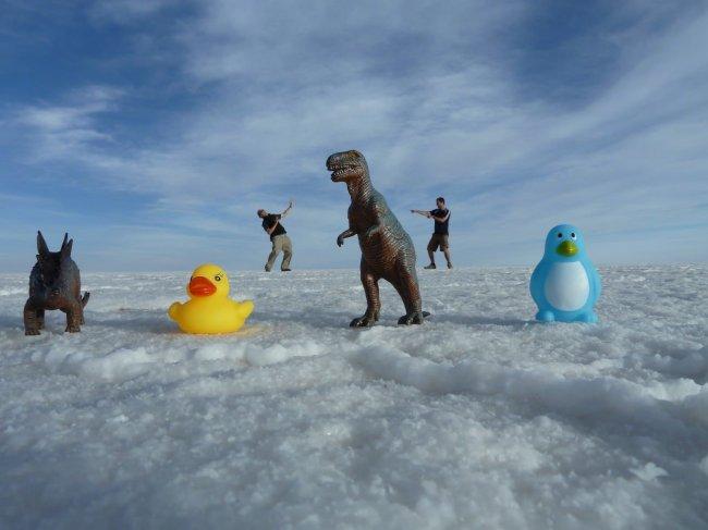 Salt Flats Toys