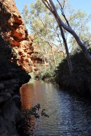 Garden of Eden watering hole