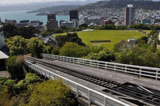 View of Wellington from the botanical gardens