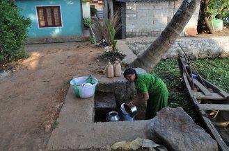 Kerala Backwaters (6)
