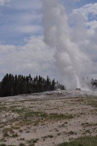 Yellowstone_old_faithful_8