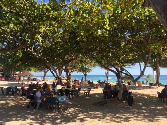 Plage Raisins Guadeloupe Beaches