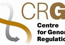 CRG International PhD Fellowship 2019 Spain