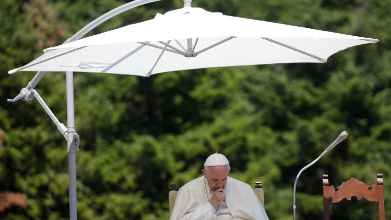 papa francisco solidaridad