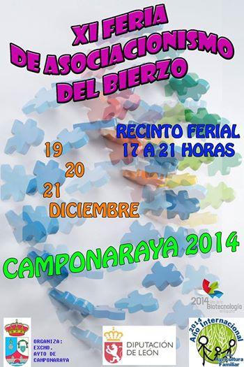 19 Diciembre-Feria Asociacionismo Camponaraya
