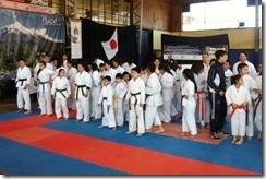 FOTO el karate se destaca en la ciudad de pucón