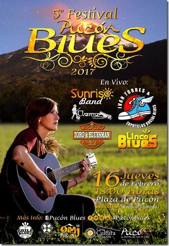 1 afiche (54x37) 5° Festival Pucón Blues