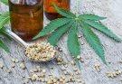 Todo lo que necesita saber sobre el CBD y el aceite de semilla de cáñamo en el cuidado de la piel