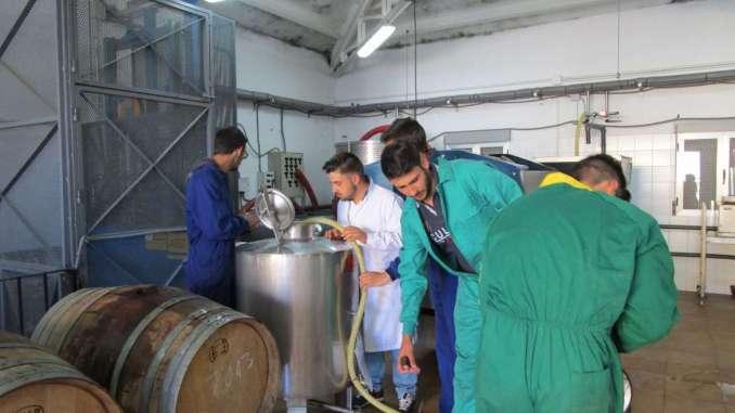 La Junta de Extremadura resuelve las primeras solicitudes de ayuda a la creación de empresas por jóvenes agricultores