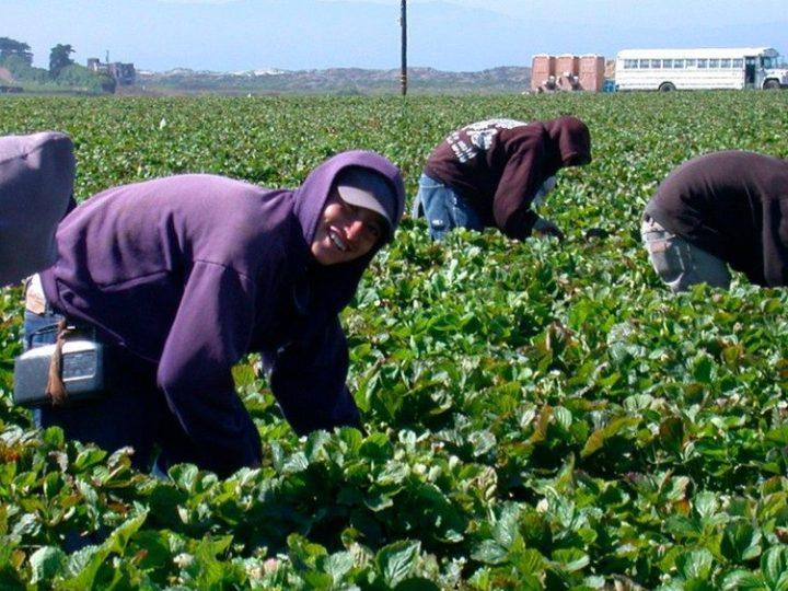 El Gobierno y UGT niegan destrucción de empleo por la subida del SMI
