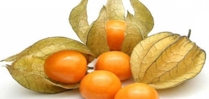 Esta pequena fruta é um tesouro real; cura a próstata, previne câncer de estômago e intestino