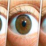 Receita natural para limpar os olhos, previnir catarata e aumentar a sua visão em 3 meses!