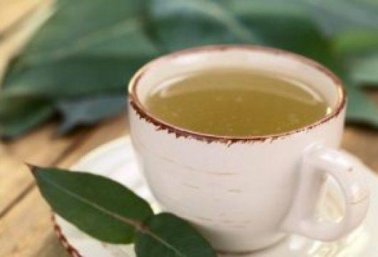 benefícios-do-chá-de-eucalipto