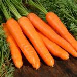 Perca peso fácil com a Dieta da Cenoura