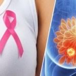 Conheças as Frutas para prevenir o câncer de mama