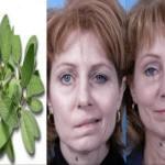Conheça a Erva milagrosa que trata Paralisia Facial e uma variedade de doenças