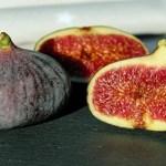 Folhas de figueira: Diga adeus a Diabetes e reduza triglicerídeos … Os resultados são surpreendentes!
