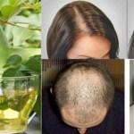 Com este poderoso remédio natural você vai parar a queda de cabelo  em 100% e fazer crescer como nunca!