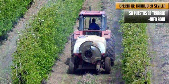 puestos de trabajo como operarios agrícola en Sevilla