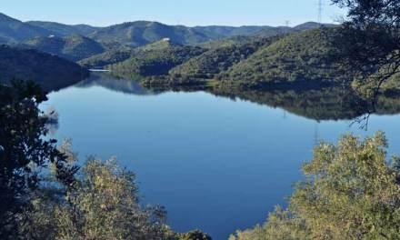 Actividades en el Parque Natural Sierra Cardeña y Montoro