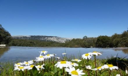 El Parque Natural de las Sierras Subbéticas acoge la X edición de la Semana de los Geoparques Europeos