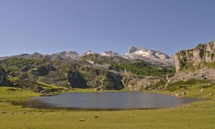 El Parque Nacional de Picos de Europa acogerá 7 ejemplares quebrantahuesos