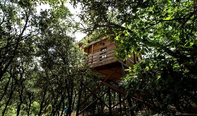 Cabañas en los árboles en el Parque Nacional de Cabañeros