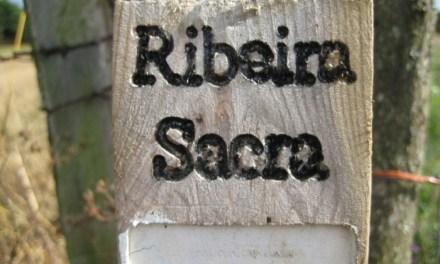 Se presenta el II Festival del Viño de la Ribeira Sacra»
