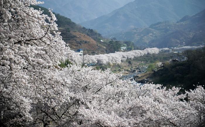 El número de viajeros de turismo rural desciende un 11,4% en marzo