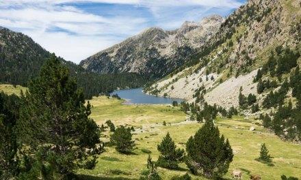 """Aumenta el número de viajeros """"rurales"""" en Cataluña en mayo"""