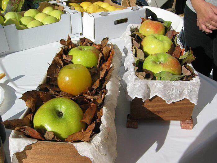 VII Fiesta de la Manzana Esperiega