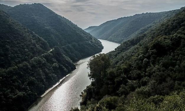 Grave descenso del turismo rural en la Sierra de Hornachuelos