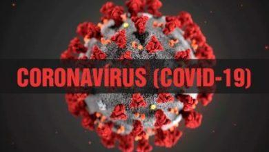 Photo of Sobe para 19 o número de curados do coronavírus em Conquista